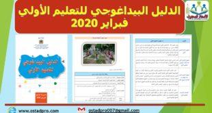 الدليل البيداغوجي للتعليم الأولي فبراير 2020